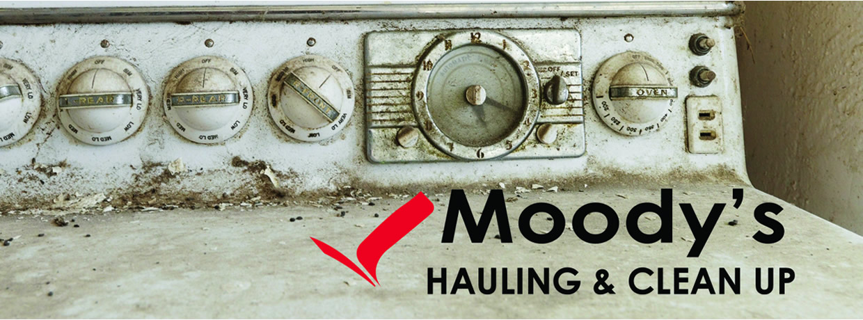 About Moody's Hauling